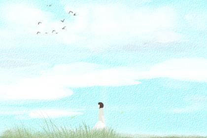 龟背竹的风水作用,寓意旺财长寿_简单知识网